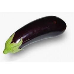 Eggplant - Berinjela - (Solanum melongela)  30g