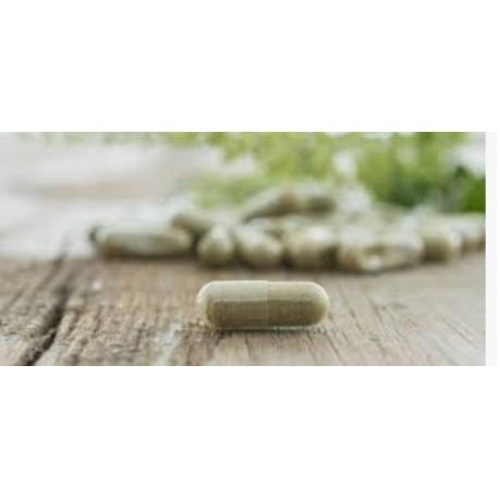 Multicomplex Multivitamins 90 Pills