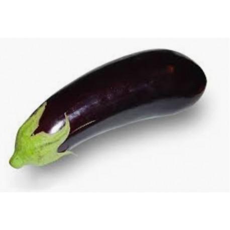 EGGPLANT - Berinjela - (Solanum melongena) 90 Pills