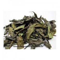Porangaba (Cordia Salicifolia) 30g